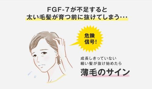 FGF-7不足で薄毛のサイン